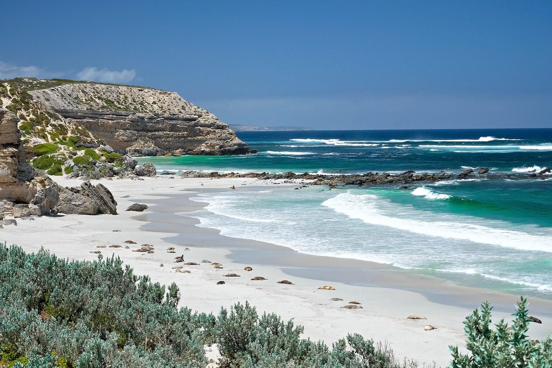 Île Kangourou - Australie - Top 10 des destinations de voyage de luxe dans le monde