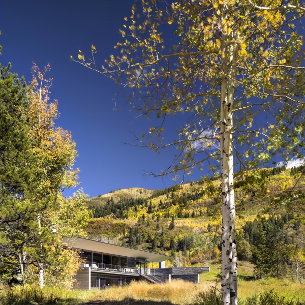 Independence Pass Residence - Northstar Dr, Aspen, CO, USA