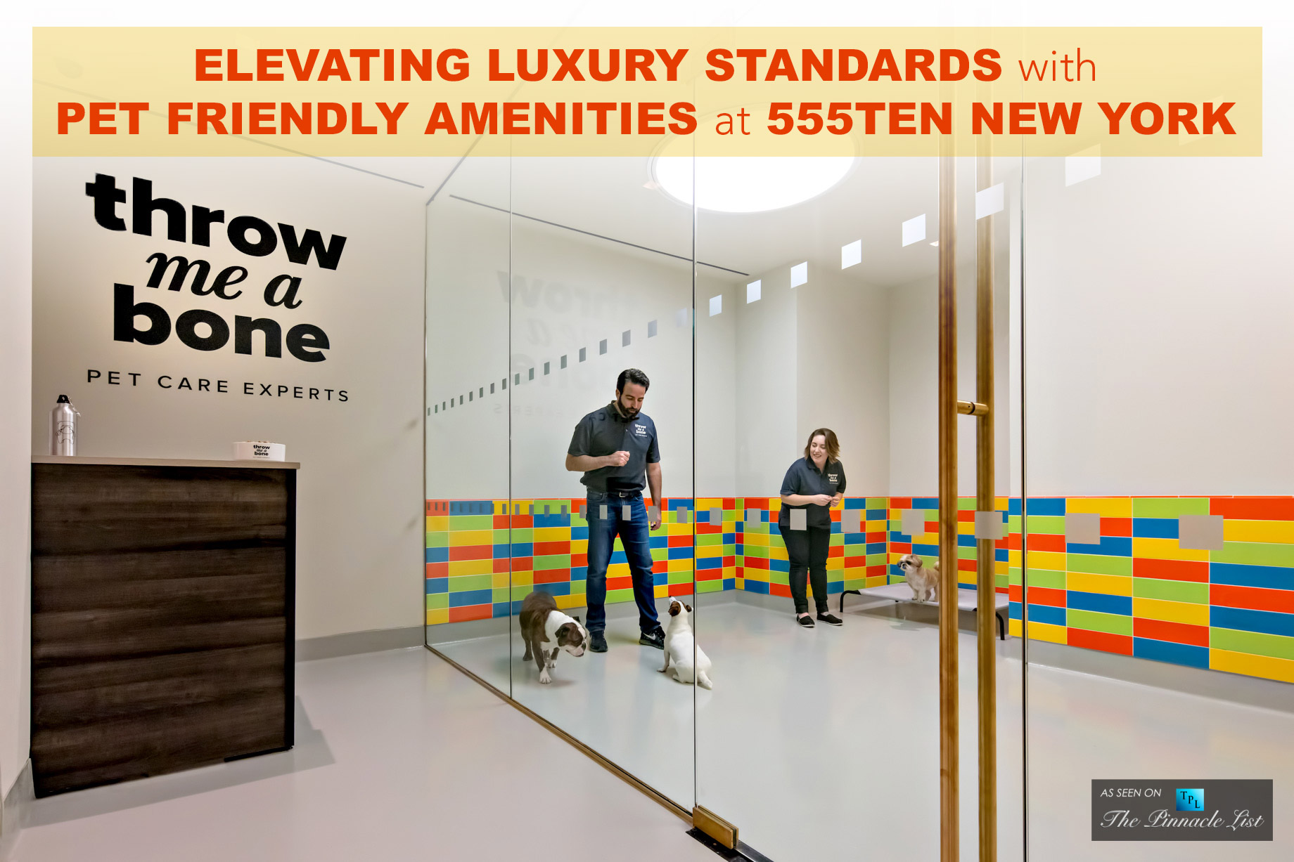 Elevating Luxury Standards with Pet Friendly Amenities at 555Ten New York