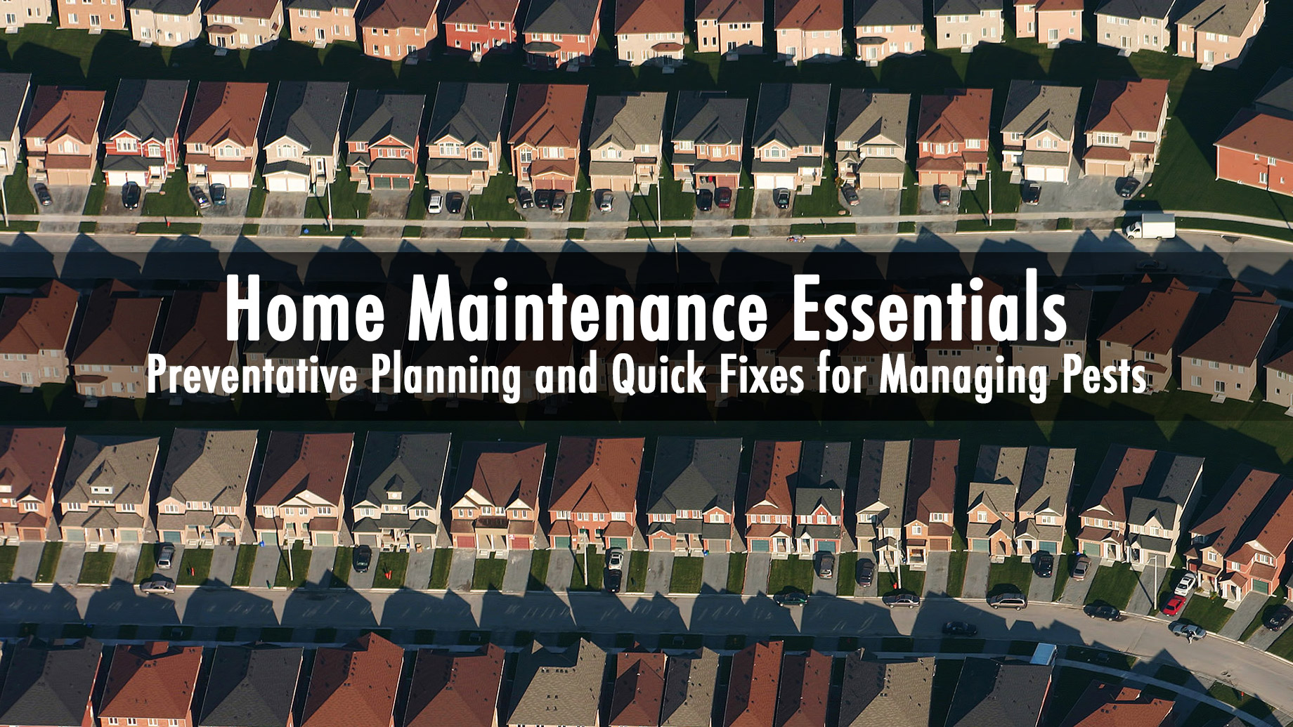 Home Maintenance Essentials - Preventative Planning and Quick Fixes for Managing Pests