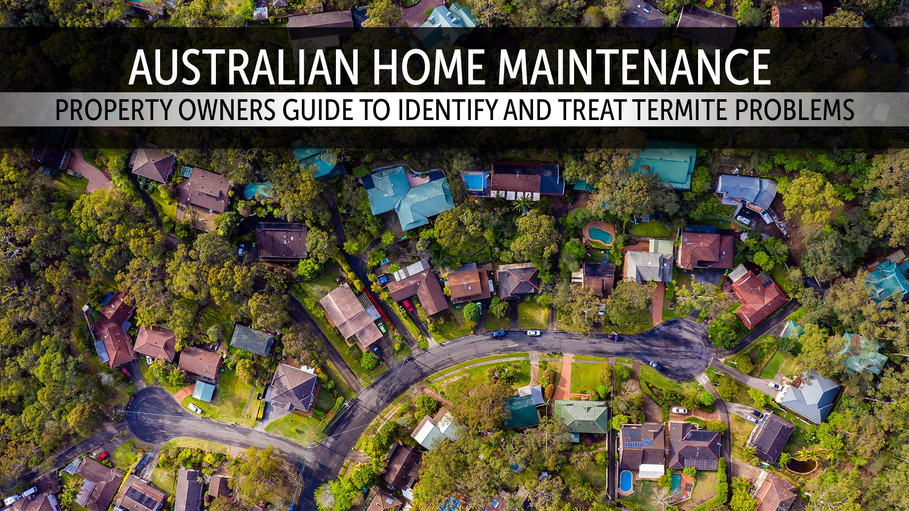 Australian Home Maintenance - Property Owners Guide To Identify and Treat Termite Problems