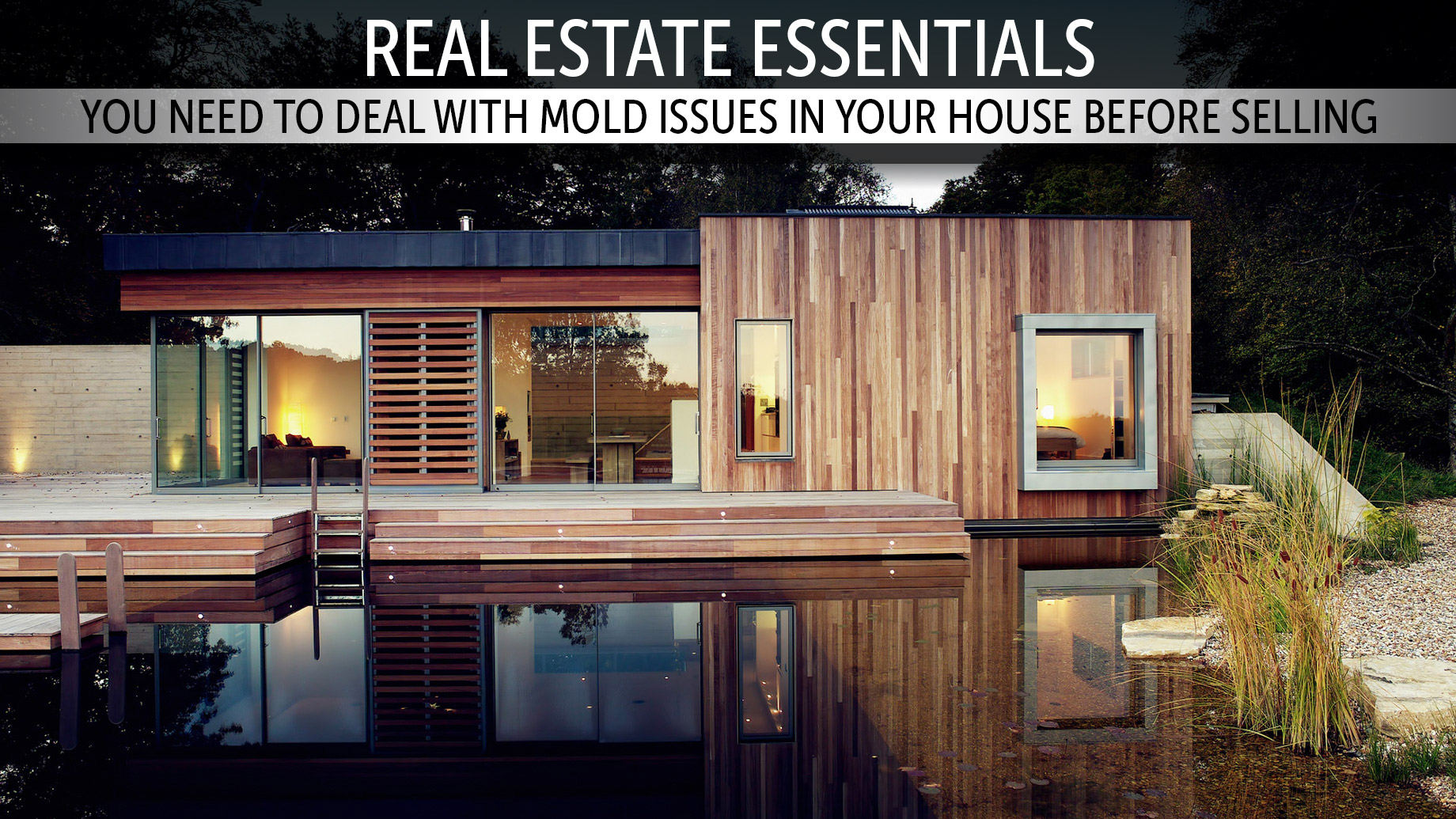 Real Estate Essentials - You Need to Deal with Mold Issues in Your House Before Selling