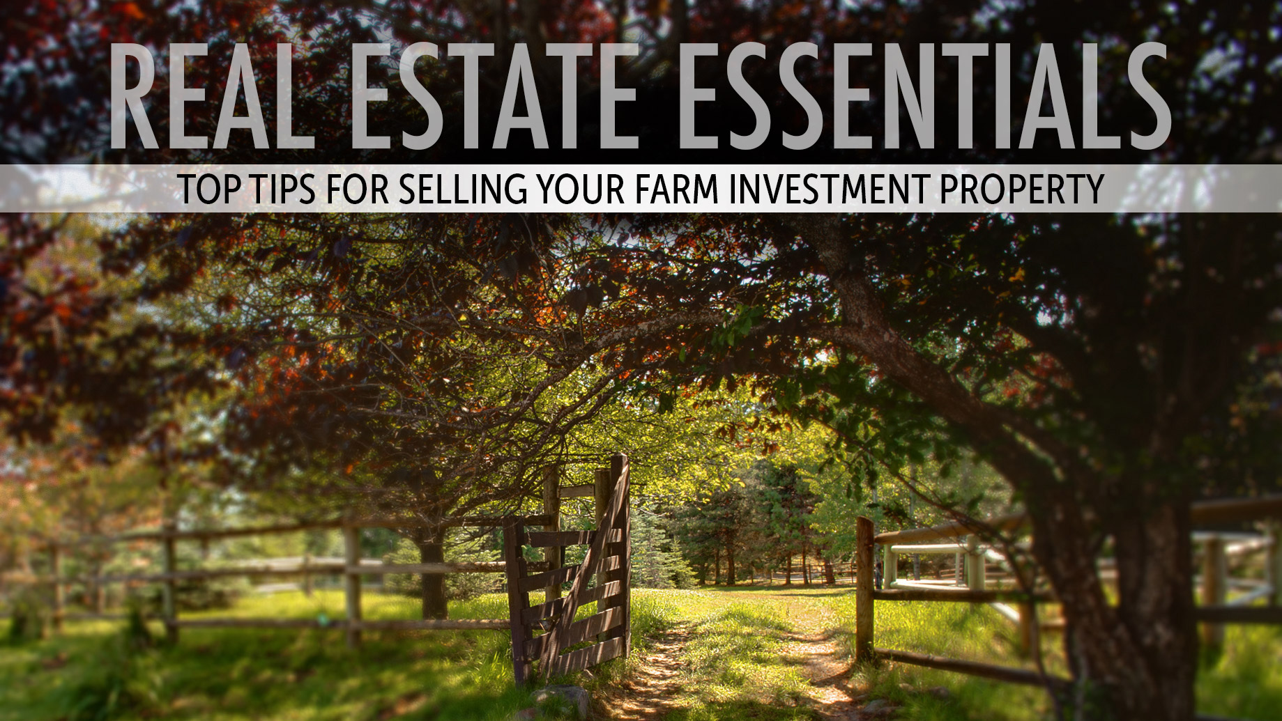 Real Estate Essentials - Top Tips for Selling Your Farm Investment Property