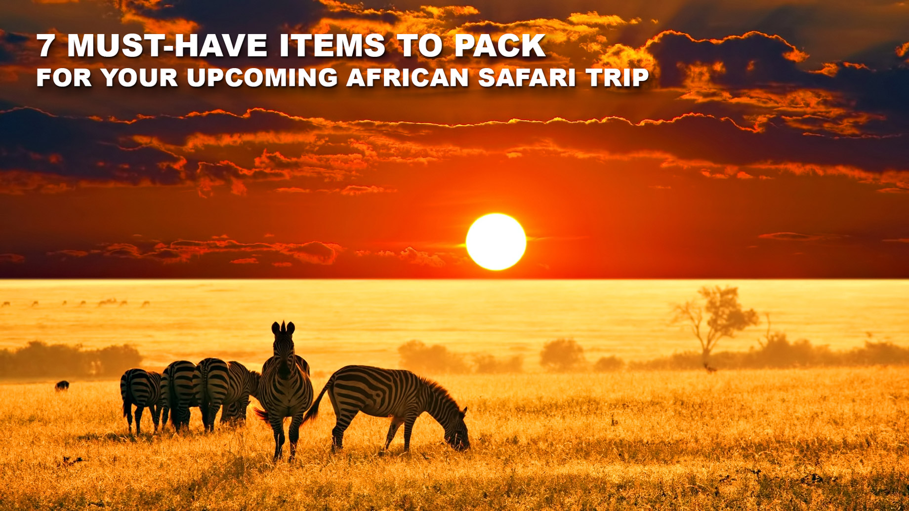 7 Must-Have Items to Pack for Your Upcoming African Safari Trip