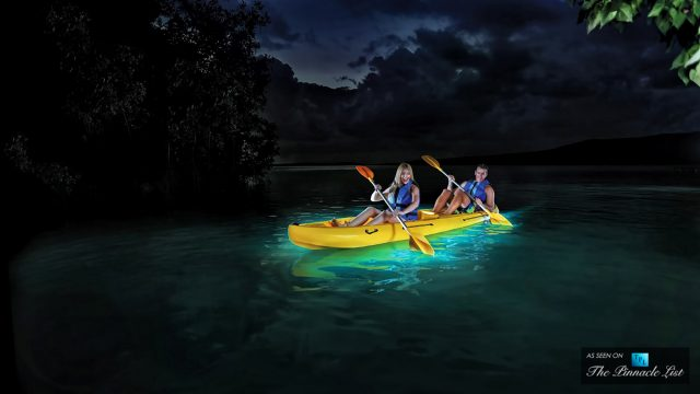 Vieques, Puerto Rico - An Exotic Caribbean Island Featuring the World's Most Captivating Bioluminescent Bay