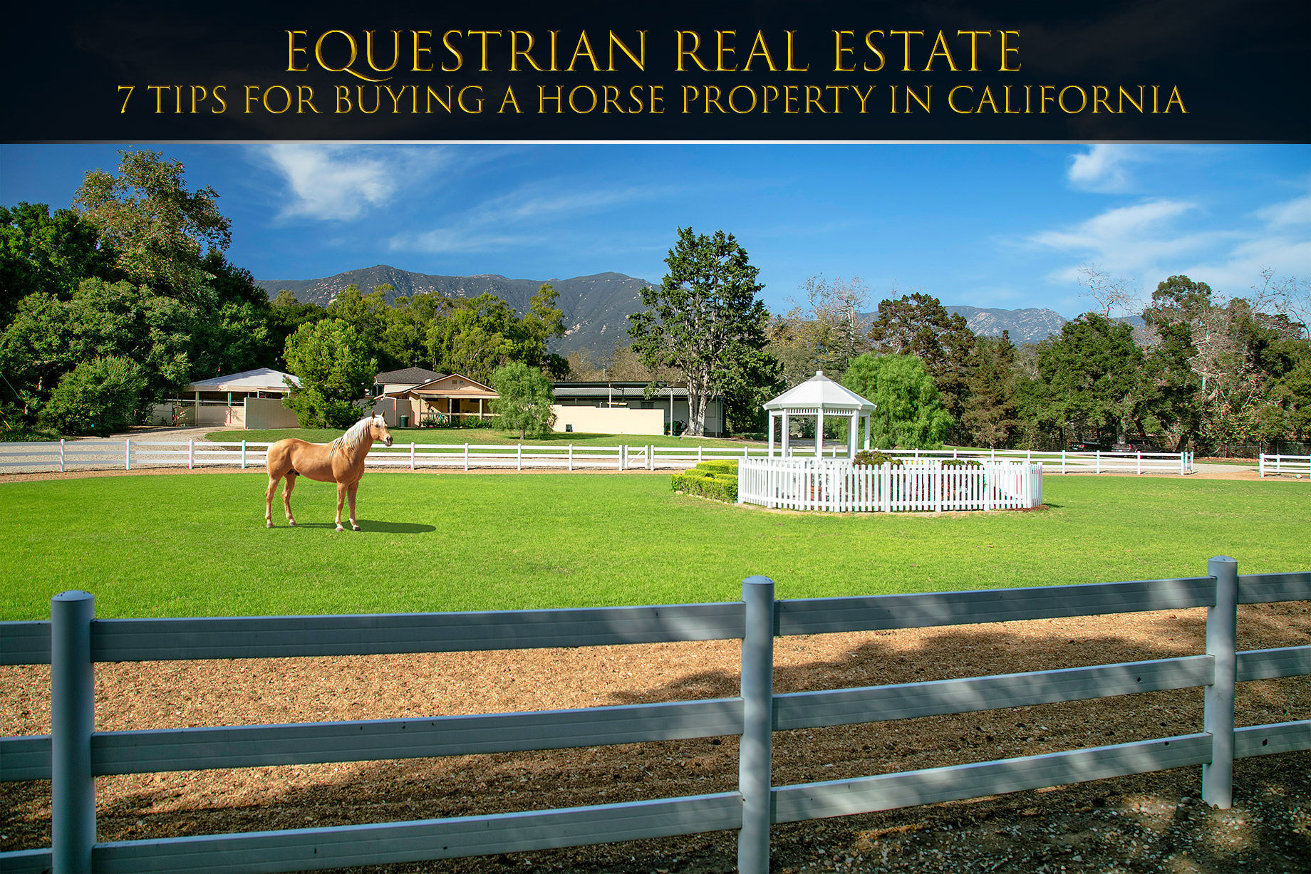 Equestrian Real Estate - 7 Tips for Buying A Horse Property In California