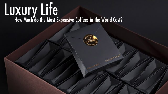 Luxury Life - How Much do the Most Expensive Coffees in the World Cost?