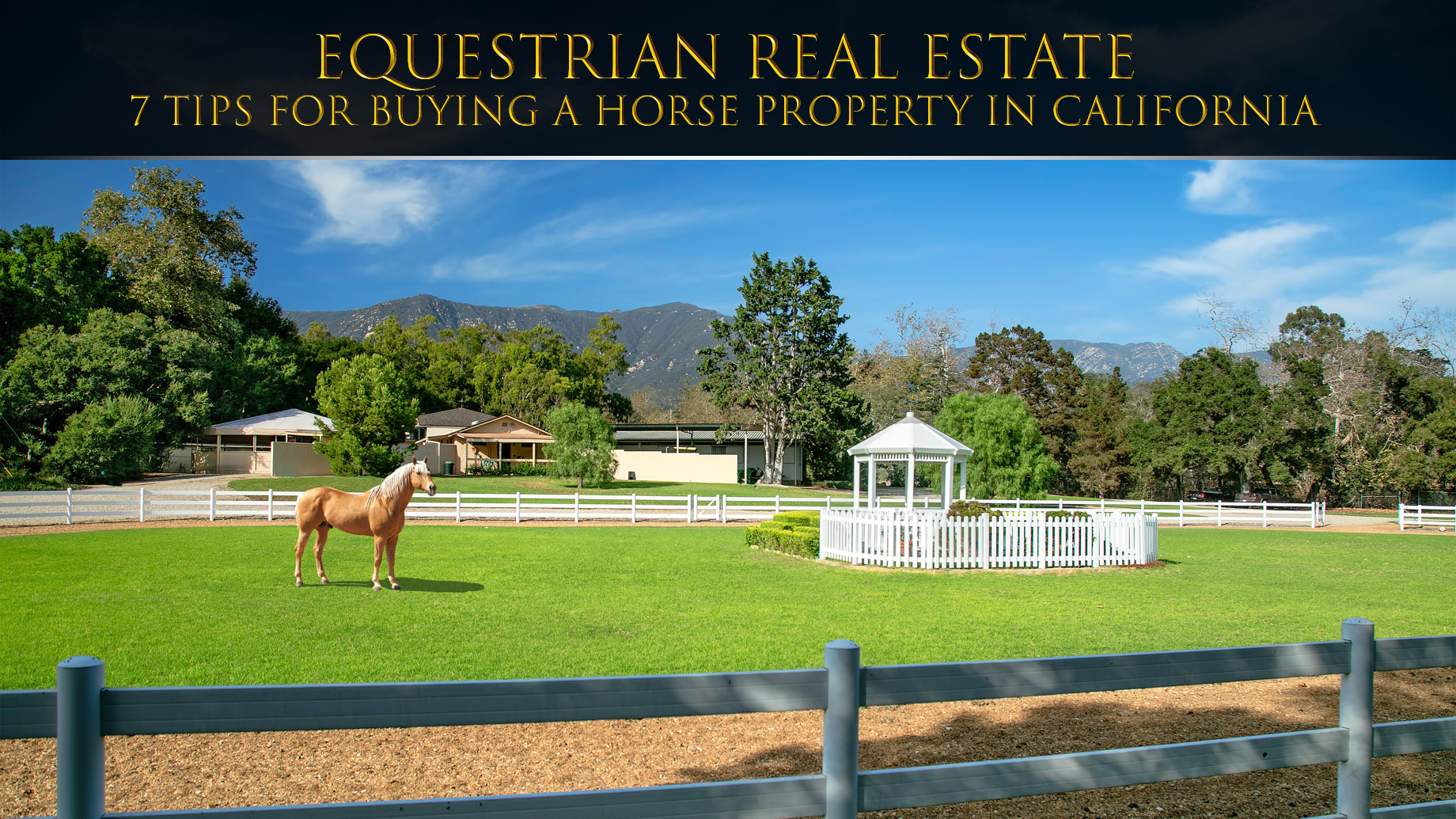 Equestrian Real Estate – 7 Tips for Buying A Horse Property In California