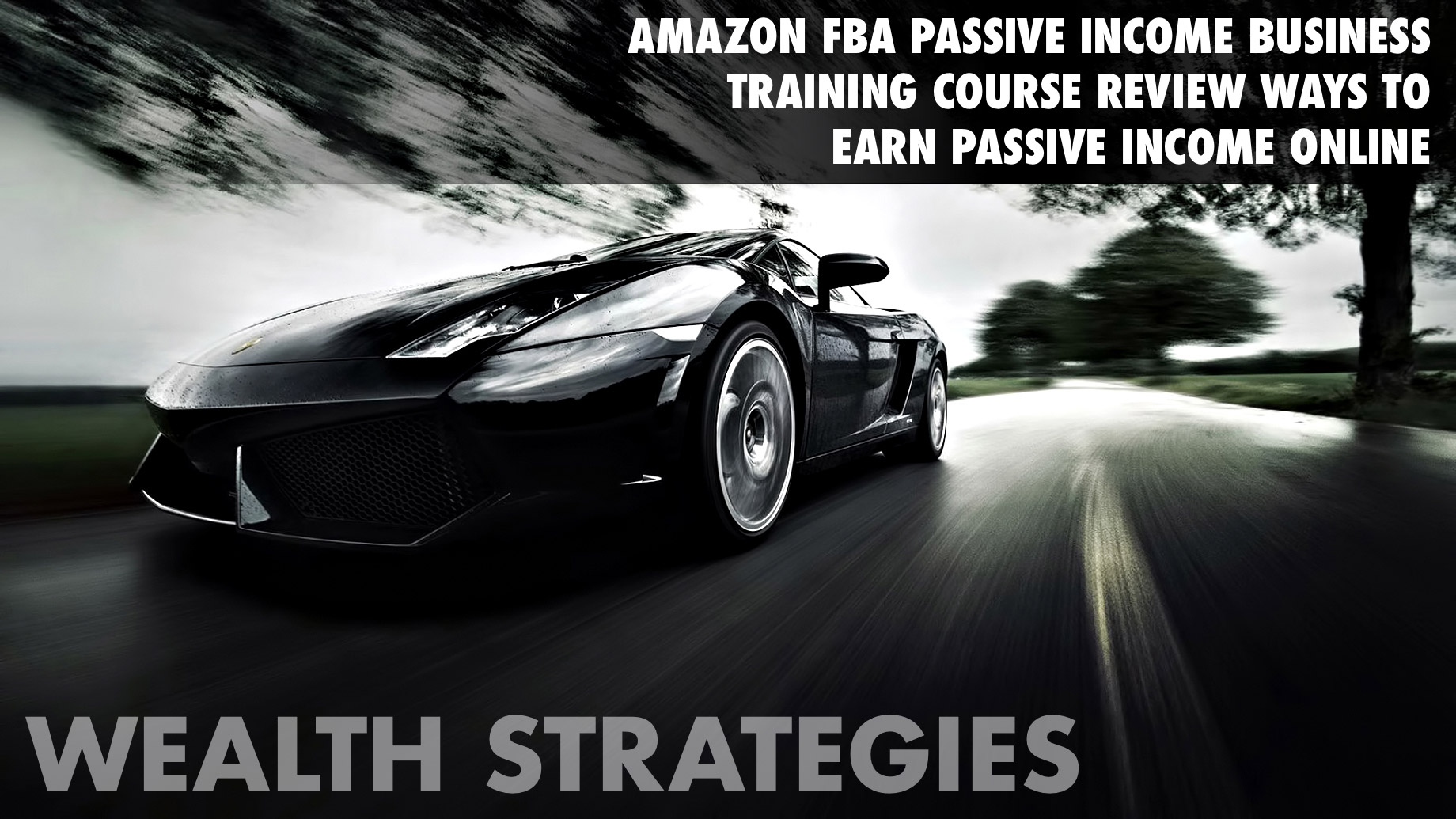 Wealth Strategies - Amazon FBA Passive Income Business Training Course