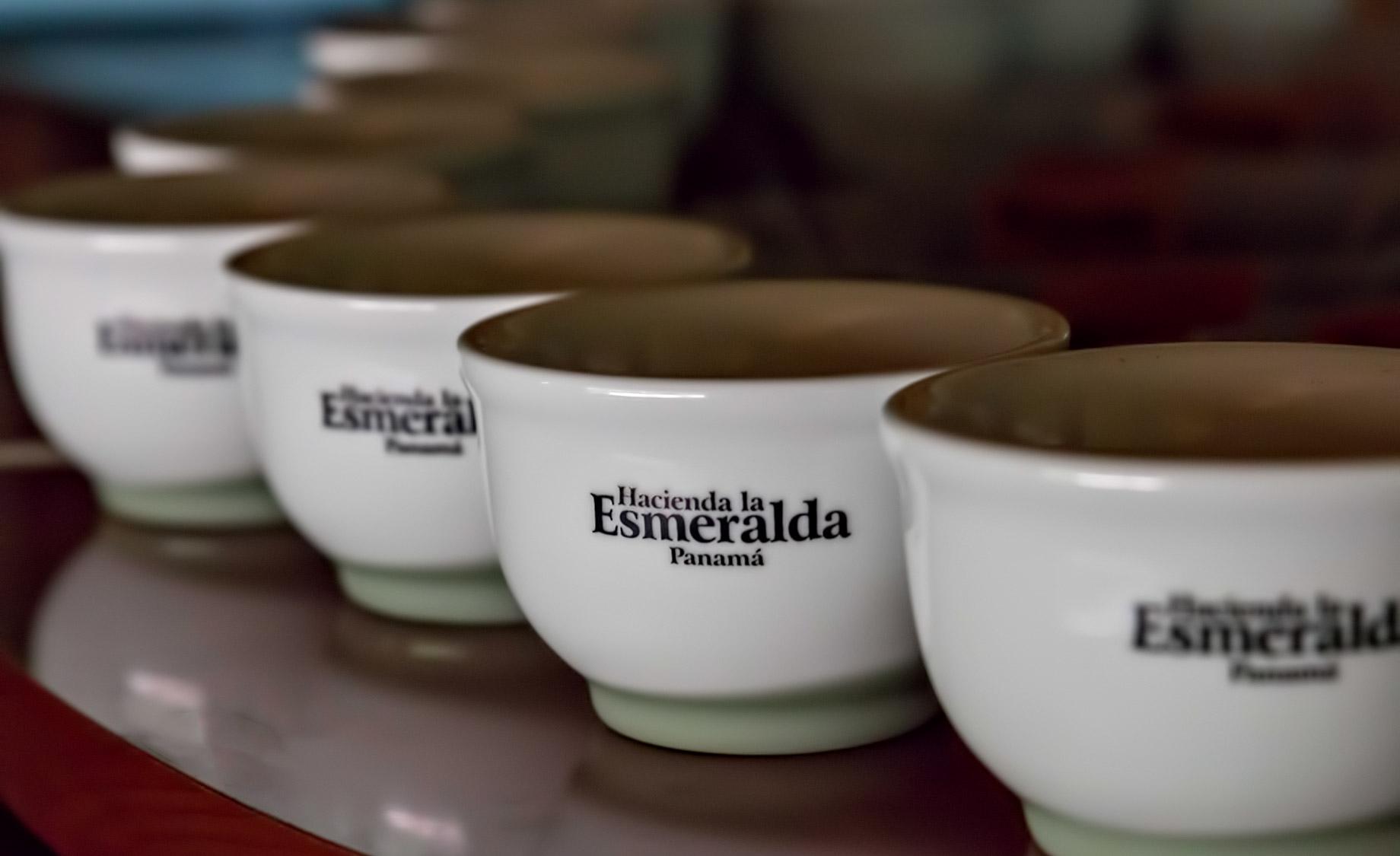 Hacienda La Esmeralda - Panama - One of the Most Expensive Coffees in the World