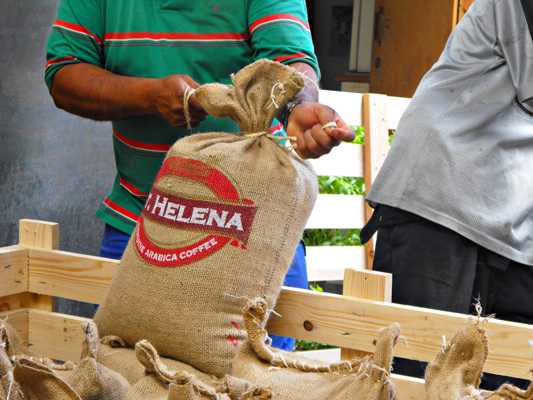 St. Helena Coffee - South Atlantic - One of the Most Expensive Coffees in the World