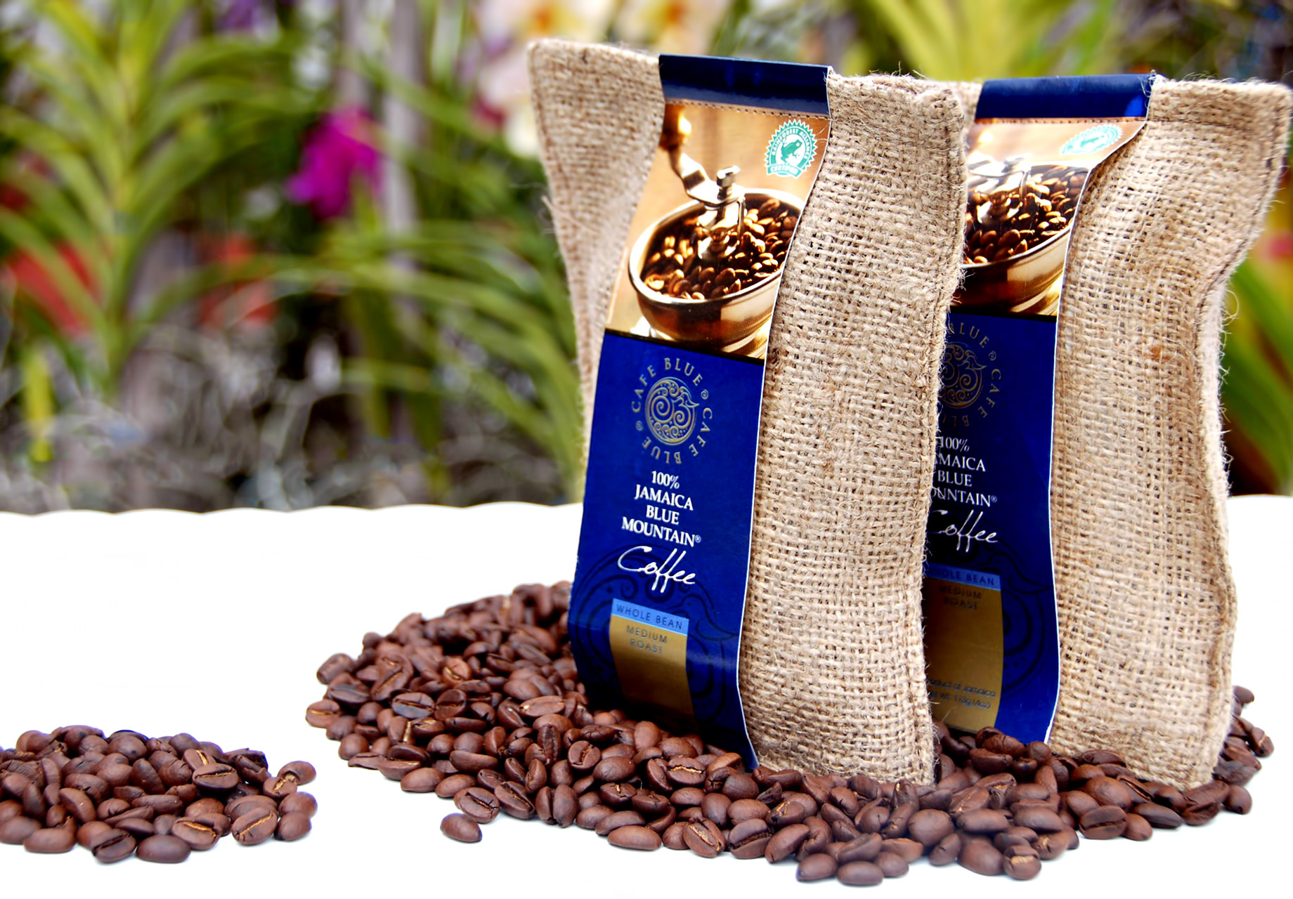 Jamaican Blue Mountain - Wallenford Estate, Jamaica - One of the Most Expensive Coffees in the World