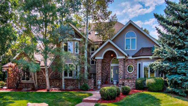 Understanding The Investment Value Of Trees On Your Property