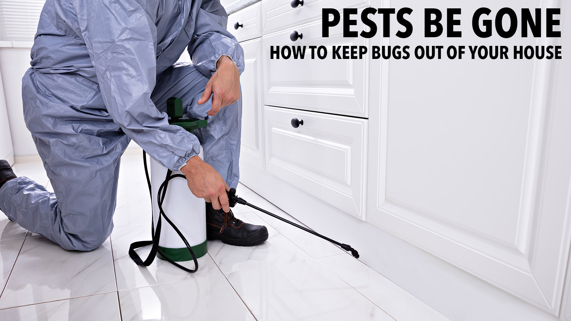 Pests Be Gone - How to Keep Bugs Out of Your House