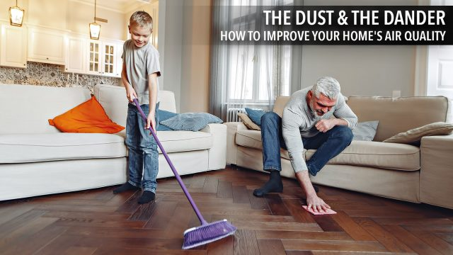 The Dust & the Dander - How to Improve Your Home's Air Quality