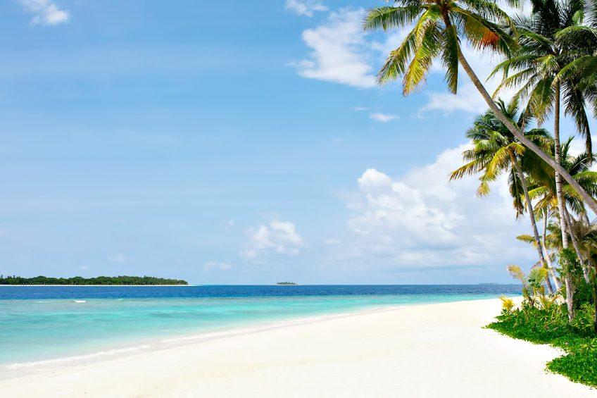 The Nautilus Maldives Luxury Resort - Thiladhoo Island, Maldives - White Sand Beach Palm Trees