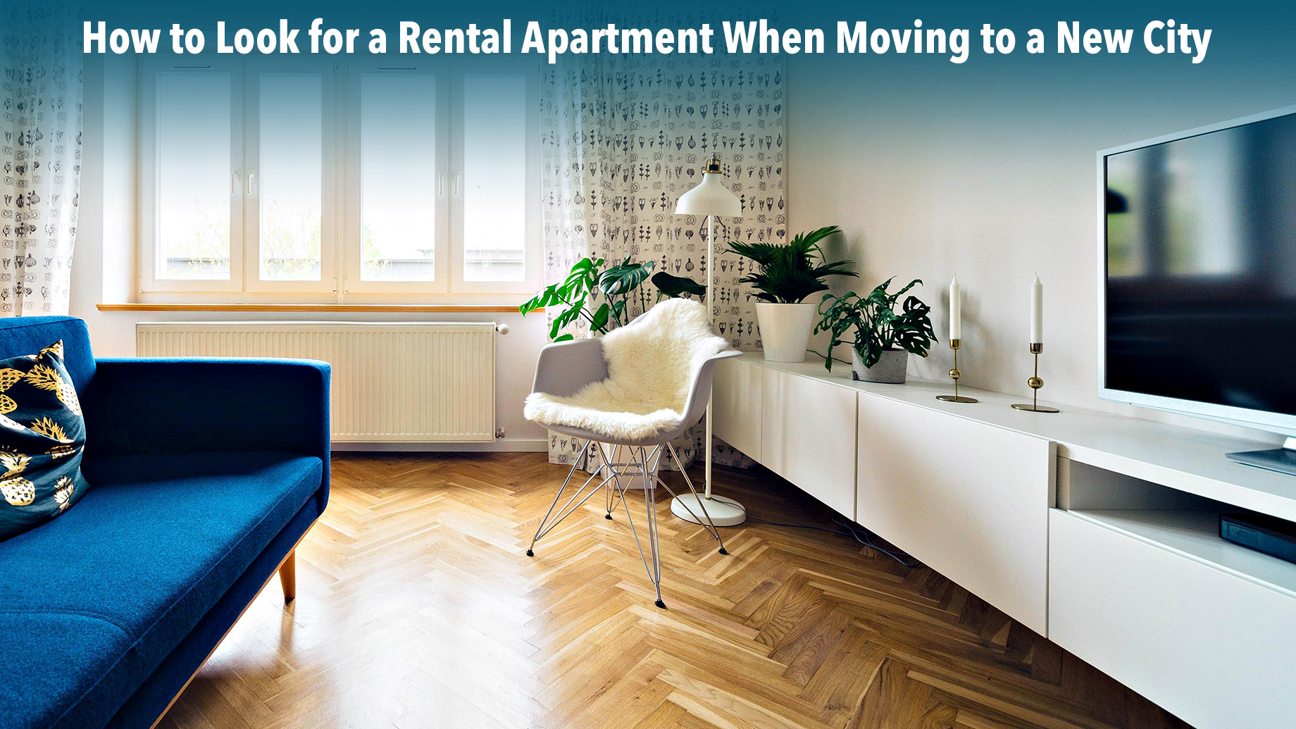 How to Look for a Rental Apartment When Moving to a New City