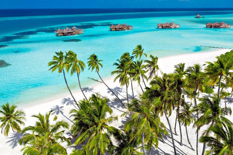 Gili Lankanfushi Luxury Resort - North Male Atoll, Maldives - White Sand Beach Palm Trees Overlooking Villas