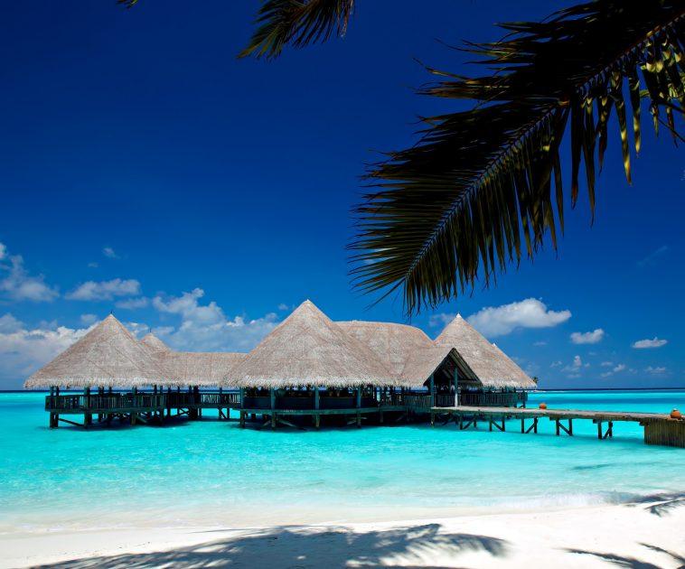 Gili Lankanfushi Luxury Resort - North Male Atoll, Maldives - Overwater Bar