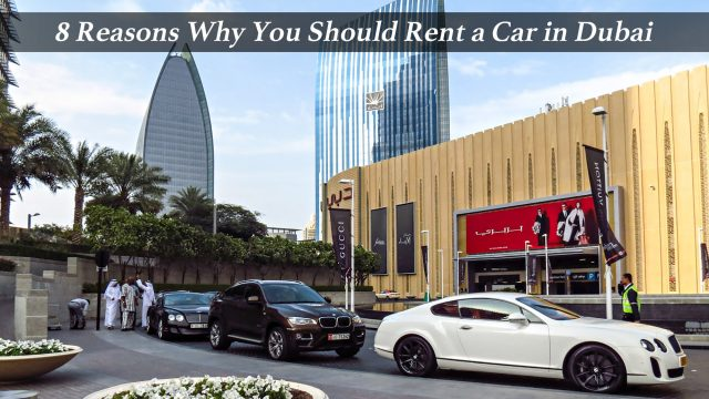 8 Reasons Why You Should Rent a Car in Dubai