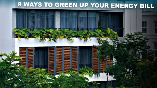 9 Ways to Green Up Your Energy Bill