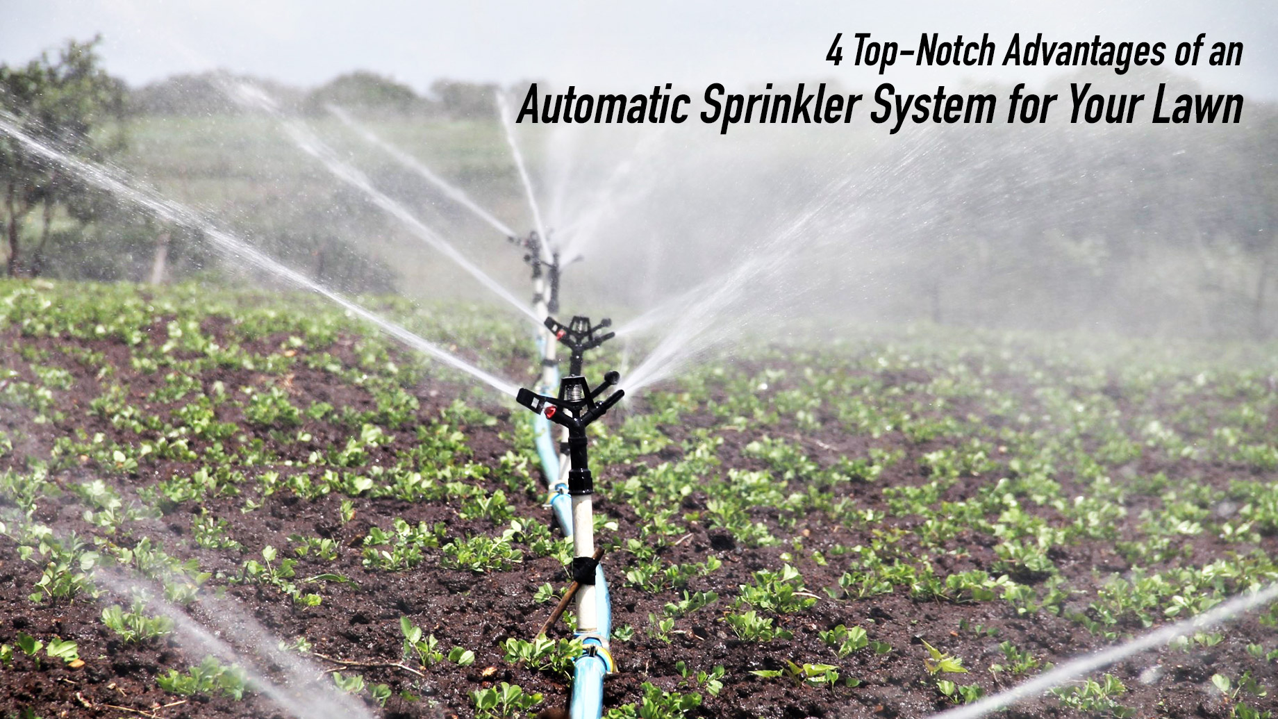 4 Top-Notch Advantages of an Automatic Sprinkler System for Your Lawn