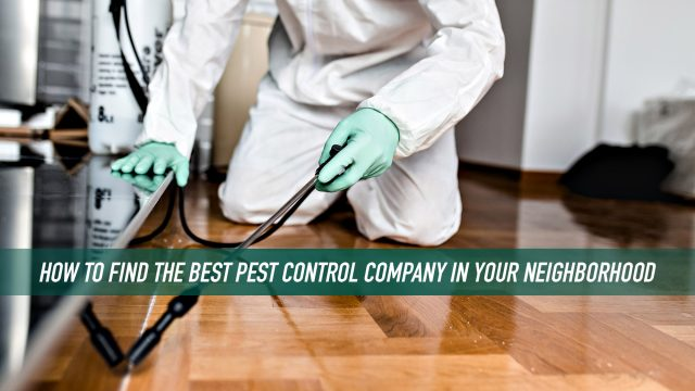 How to Find the Best Pest Control Company in Your Neighborhood