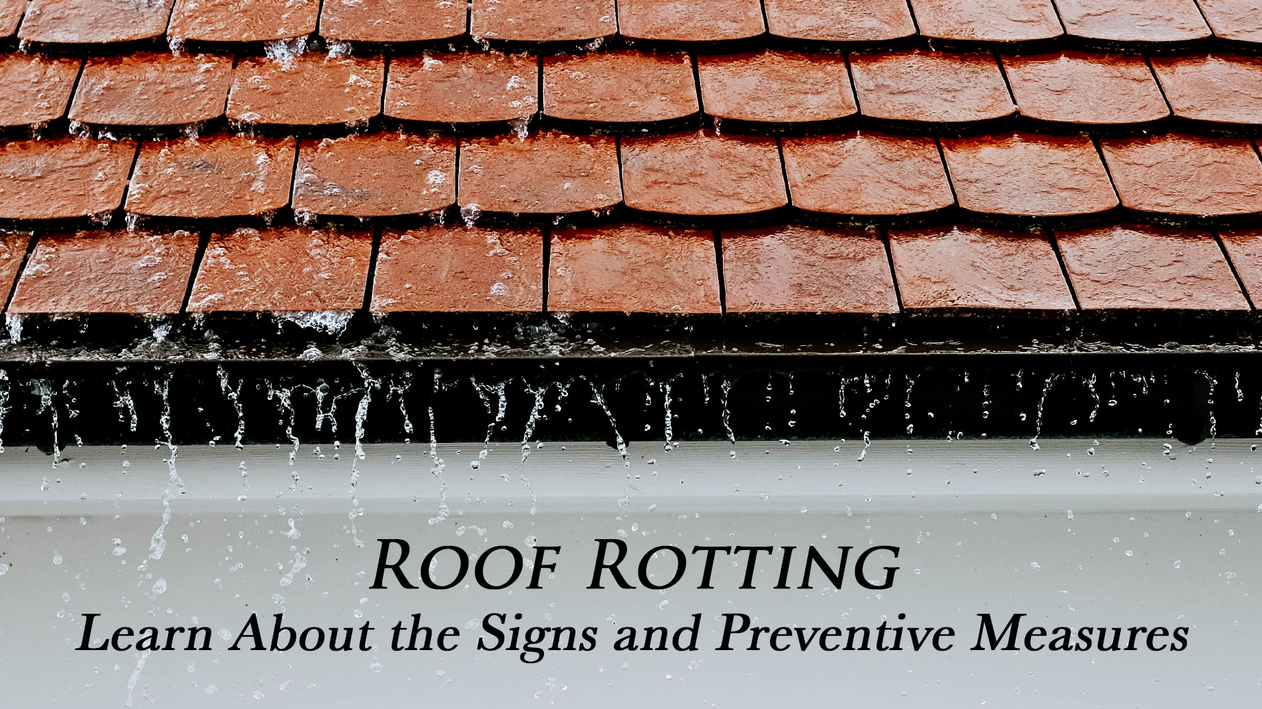 Roof Rotting - Learn About the Signs and Preventive Measures