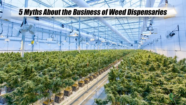 5 Myths About the Business of Weed Dispensaries