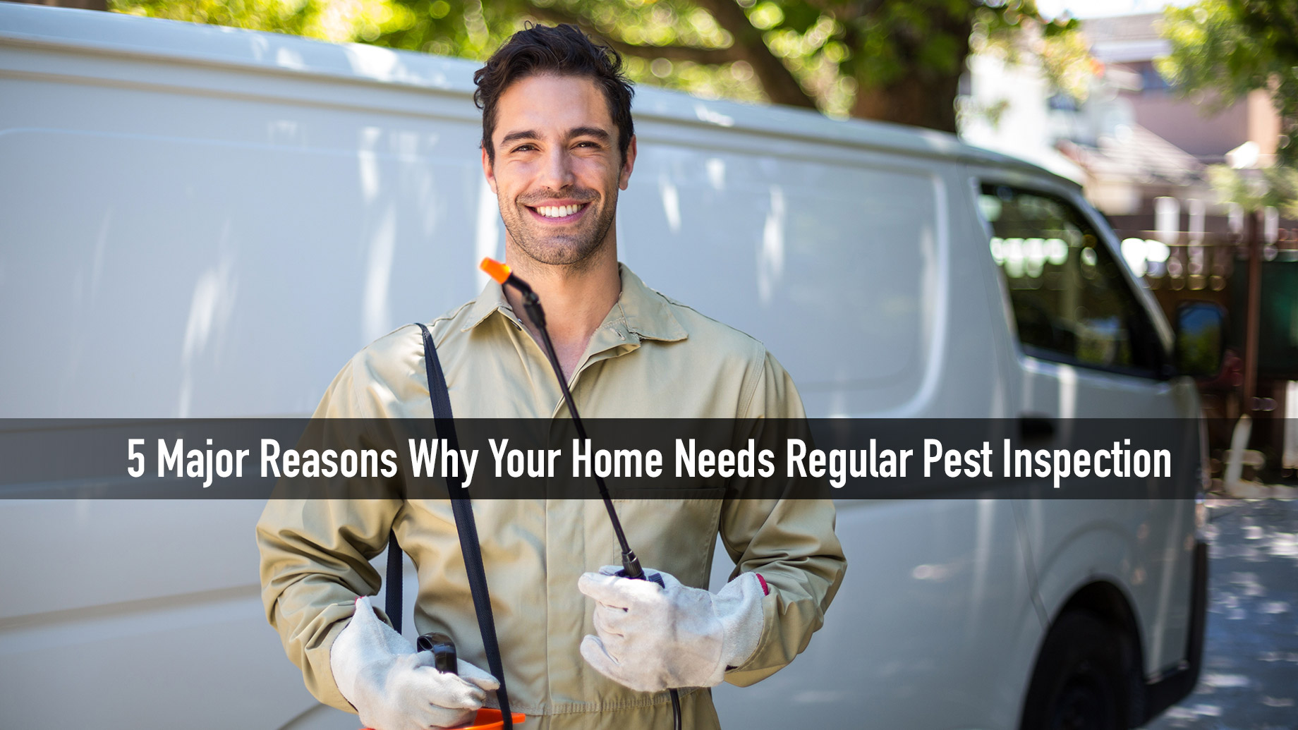 5 Major Reasons Why Your Home Needs Regular Pest Inspection