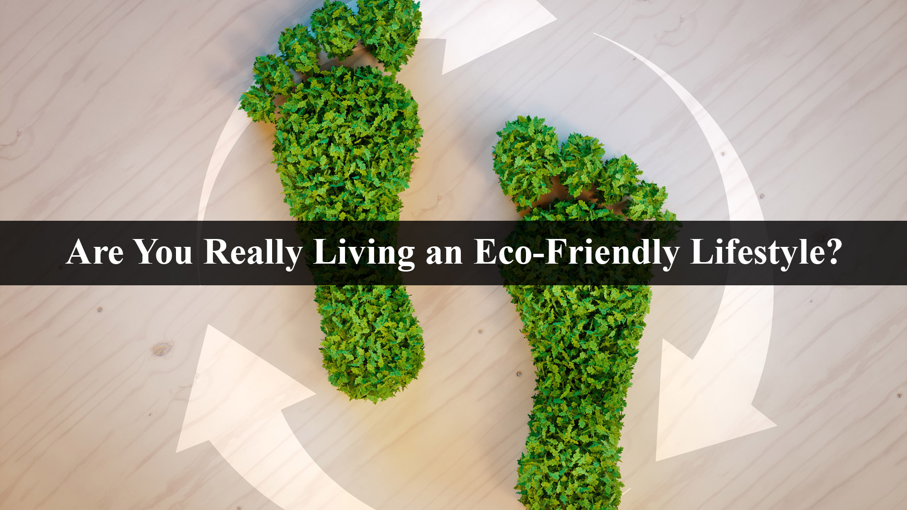 Are You Really Living an Eco-Friendly Lifestyle?