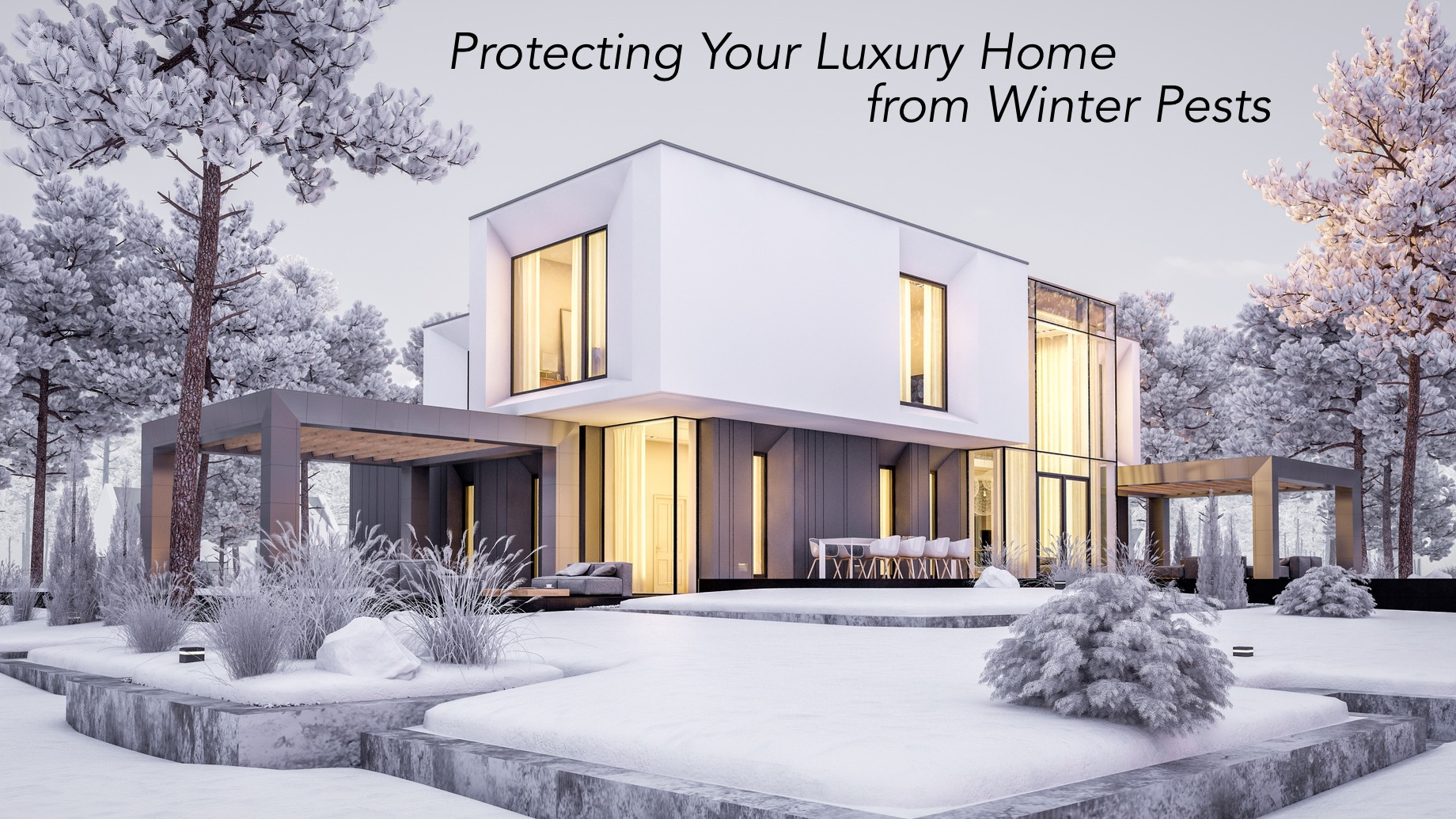 Protecting Your Luxury Home from Winter Pests
