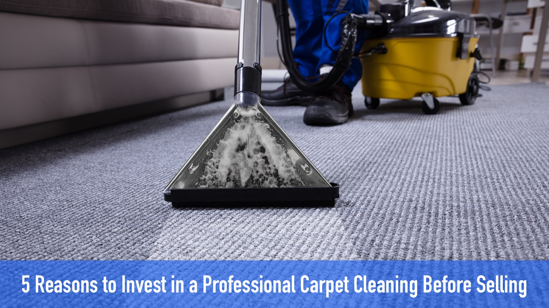 5 Reasons to Invest in a Professional Carpet Cleaning Before Selling