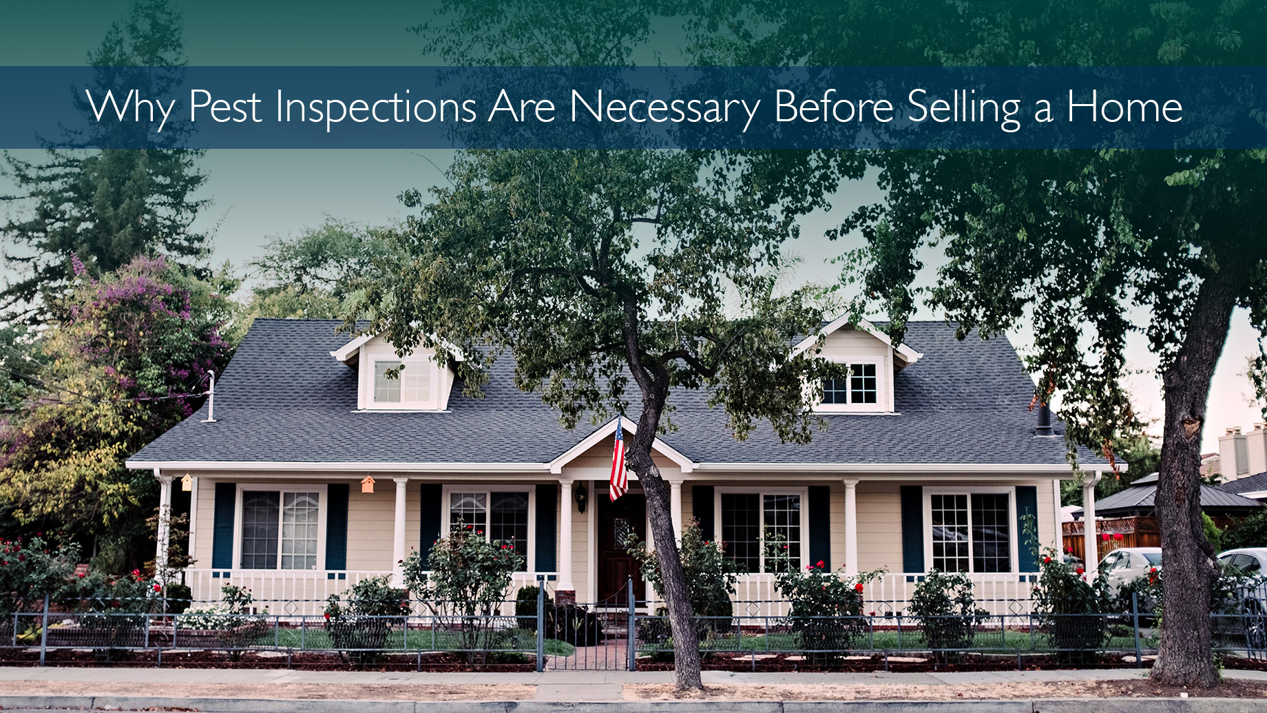 Why Pest Inspections Are Necessary Before Selling a Home