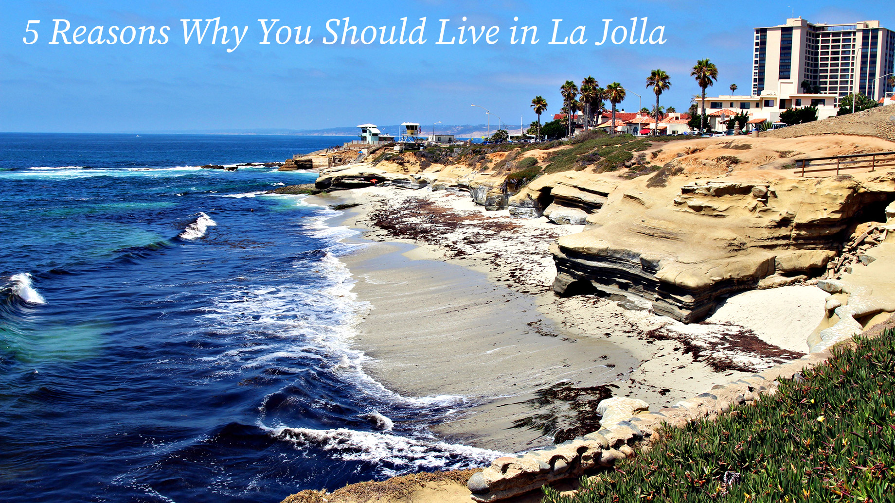 La Jolla Love - 5 Reasons Why You Should Live in La Jolla