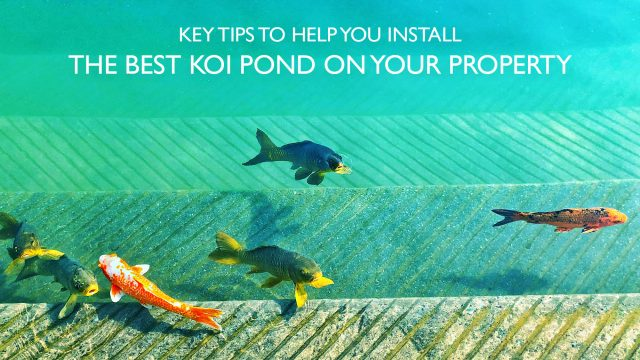 Key Tips to Help You Install the Best Koi Pond on Your Property