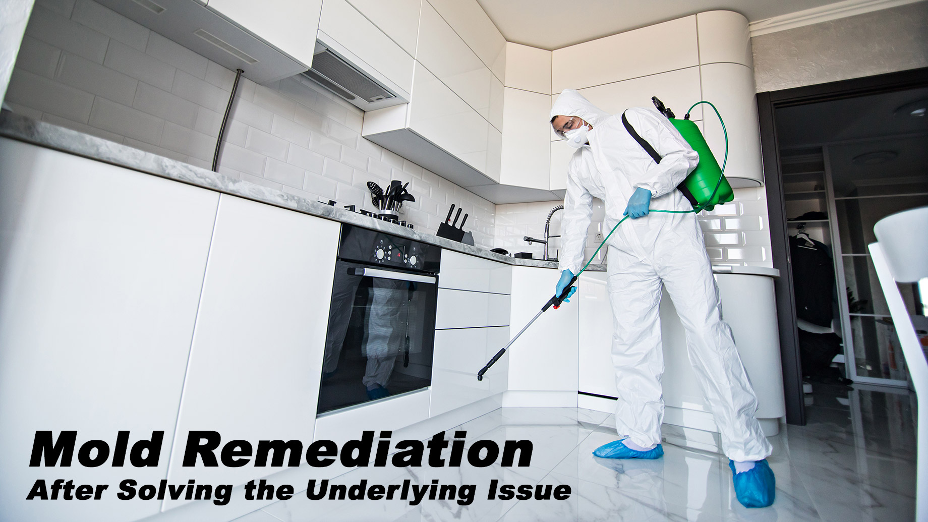 Mold Remediation - After Solving the Underlying Issue
