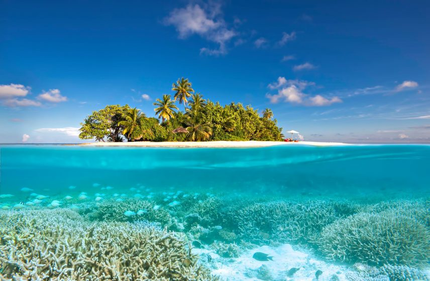 W Maldives Luxury Resort - Fesdu Island, Maldives - Gaathafushi Private Island Underwater View