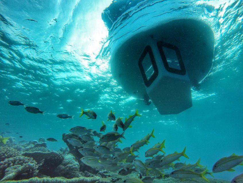 Amilla Fushi Luxury Resort and Residences - Baa Atoll, Maldives - Penguin Glass Bottom Boat Underwater View