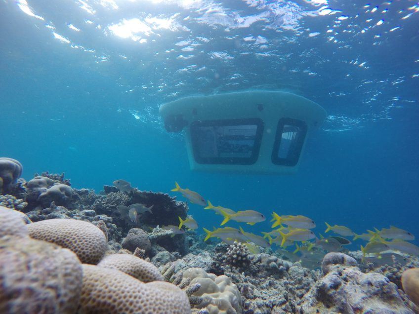 Amilla Fushi Luxury Resort and Residences - Baa Atoll, Maldives - Penguin Glass Bottom Boat Exterior Ocean View