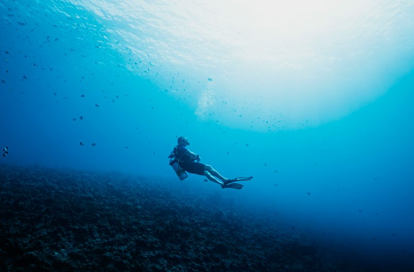 One&Only Reethi Rah Luxury Resort - North Male Atoll, Maldives - Scuba Diving Underwater