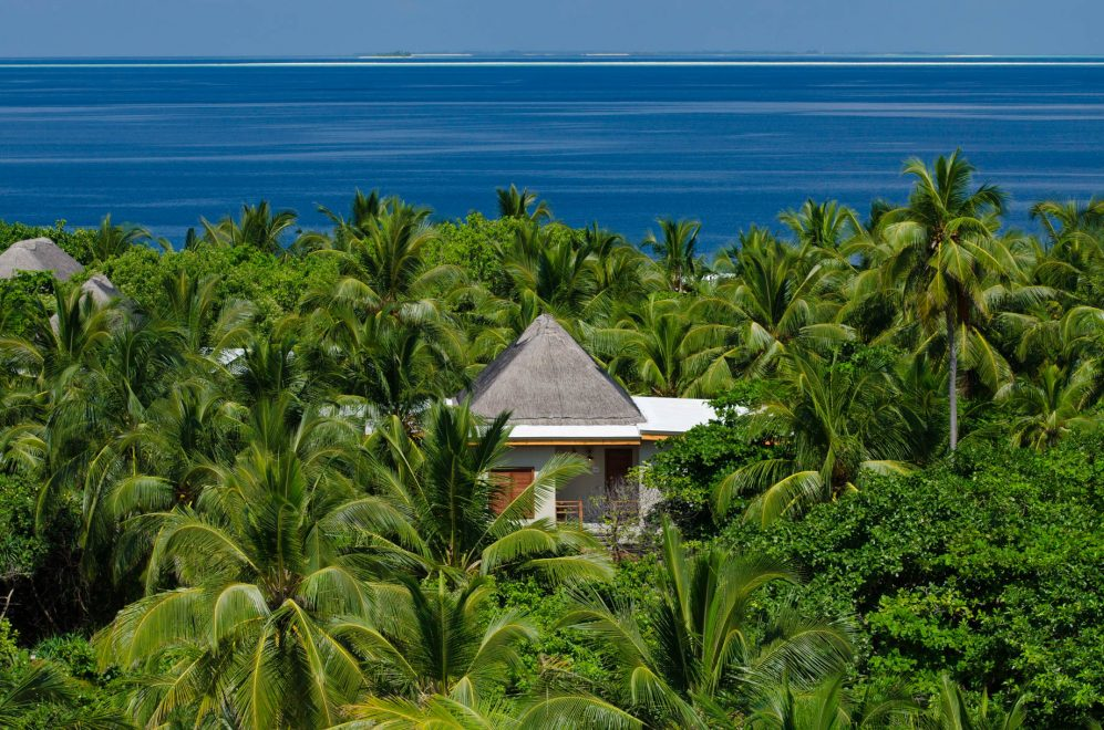 Amilla Fushi Luxury Resort and Residences - Baa Atoll, Maldives - Treetop Pool Villa