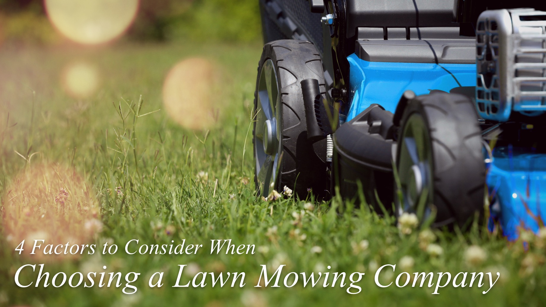 4 Factors to Consider When Choosing a Lawn Mowing Company