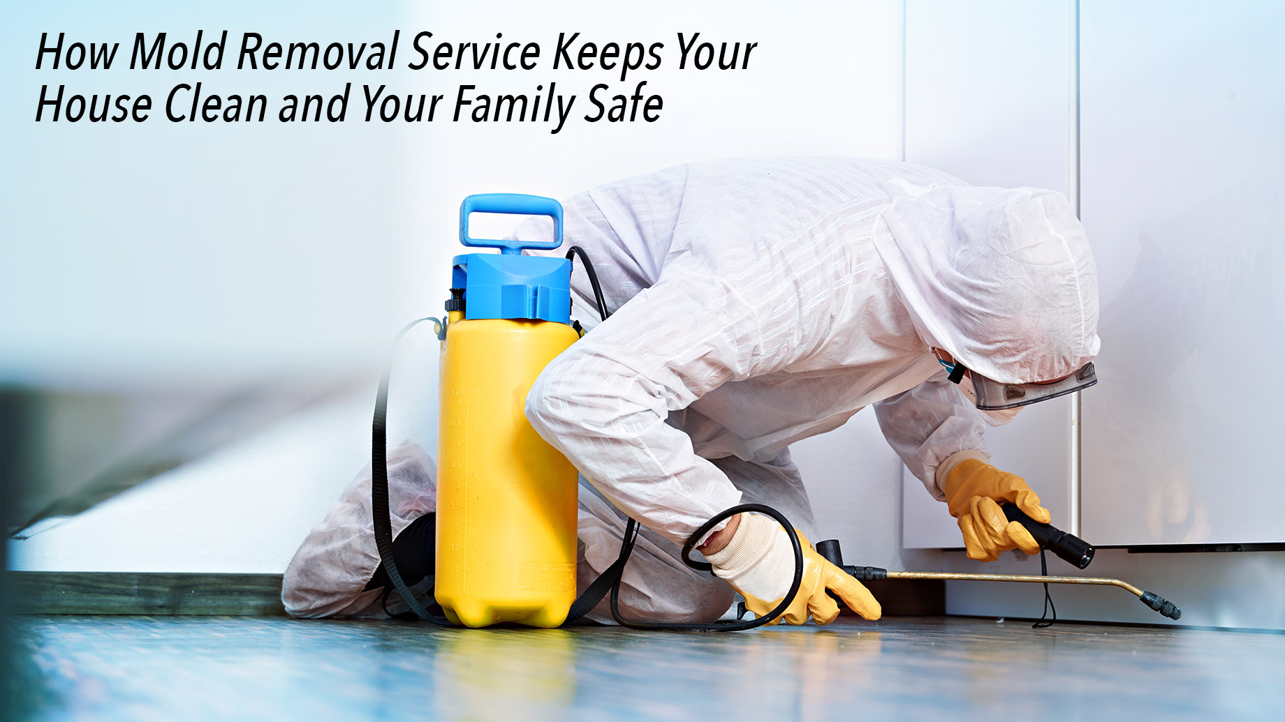 How Mold Removal Service Keeps Your House Clean and Your Family Safe