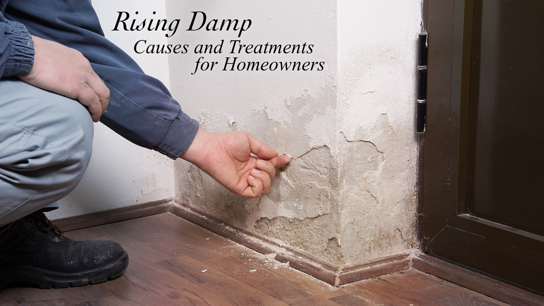 Rising Damp - Causes and Treatments for Homeowners