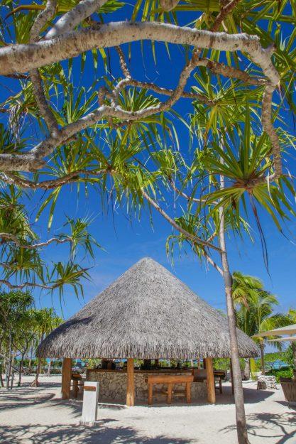 The Brando Luxury Resort - Tetiaroa Private Island, French Polynesia - Bobs Bar