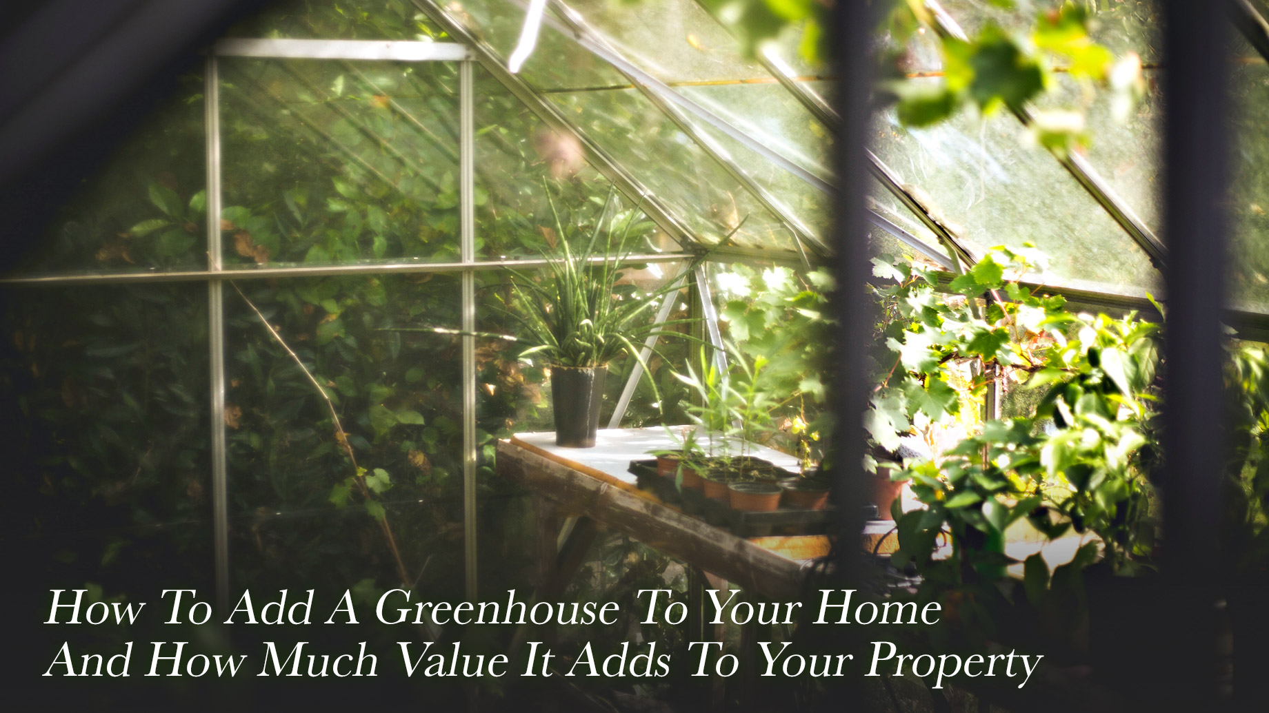 How To Add A Greenhouse To Your Home And How Much Value It Adds To Your Property