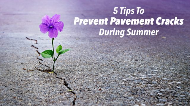 5 Tips To Prevent Pavement Cracks During Summer