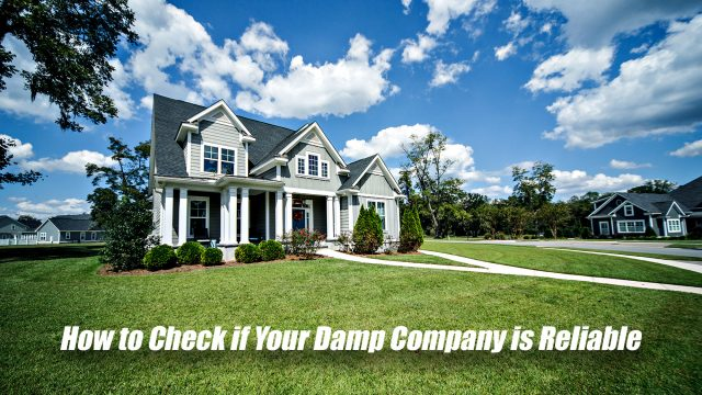 How to Check if Your Damp Company is Reliable