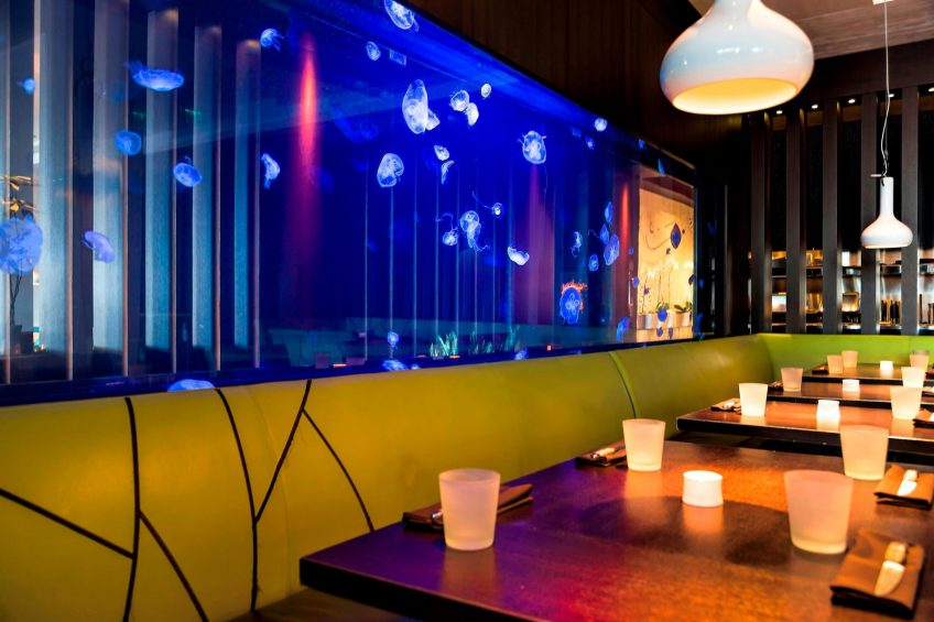 W Fort Lauderdale Luxury Hotel - Fort Lauderdale, FL, USA - Steak 954 Jellyfish Tank